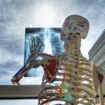 skeleton-med-technology